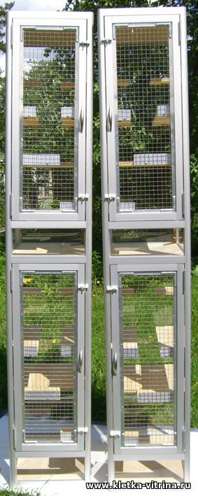 Двухэтажные клетки - витрины без тумбы